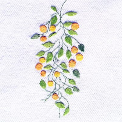 Patricia Van Ness Embroidery: Vines and Fruit #215